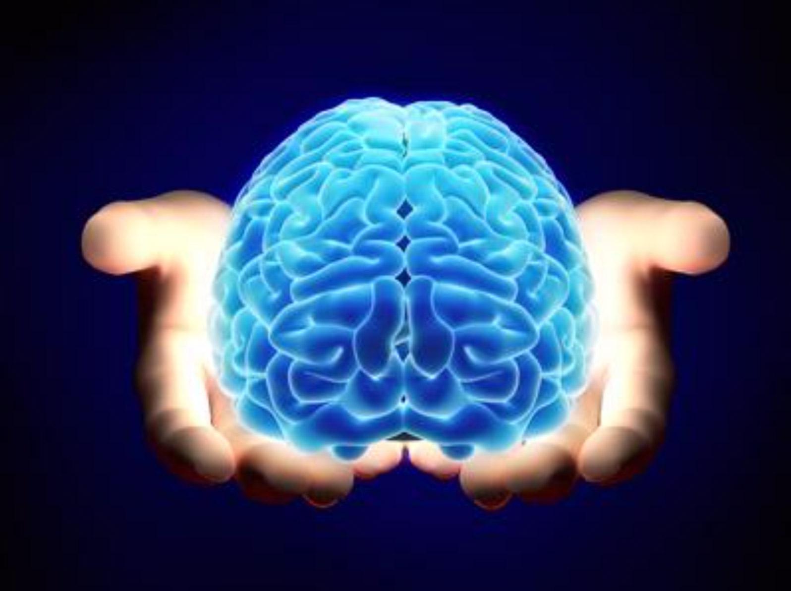 Cranial-Osteopathy-brain