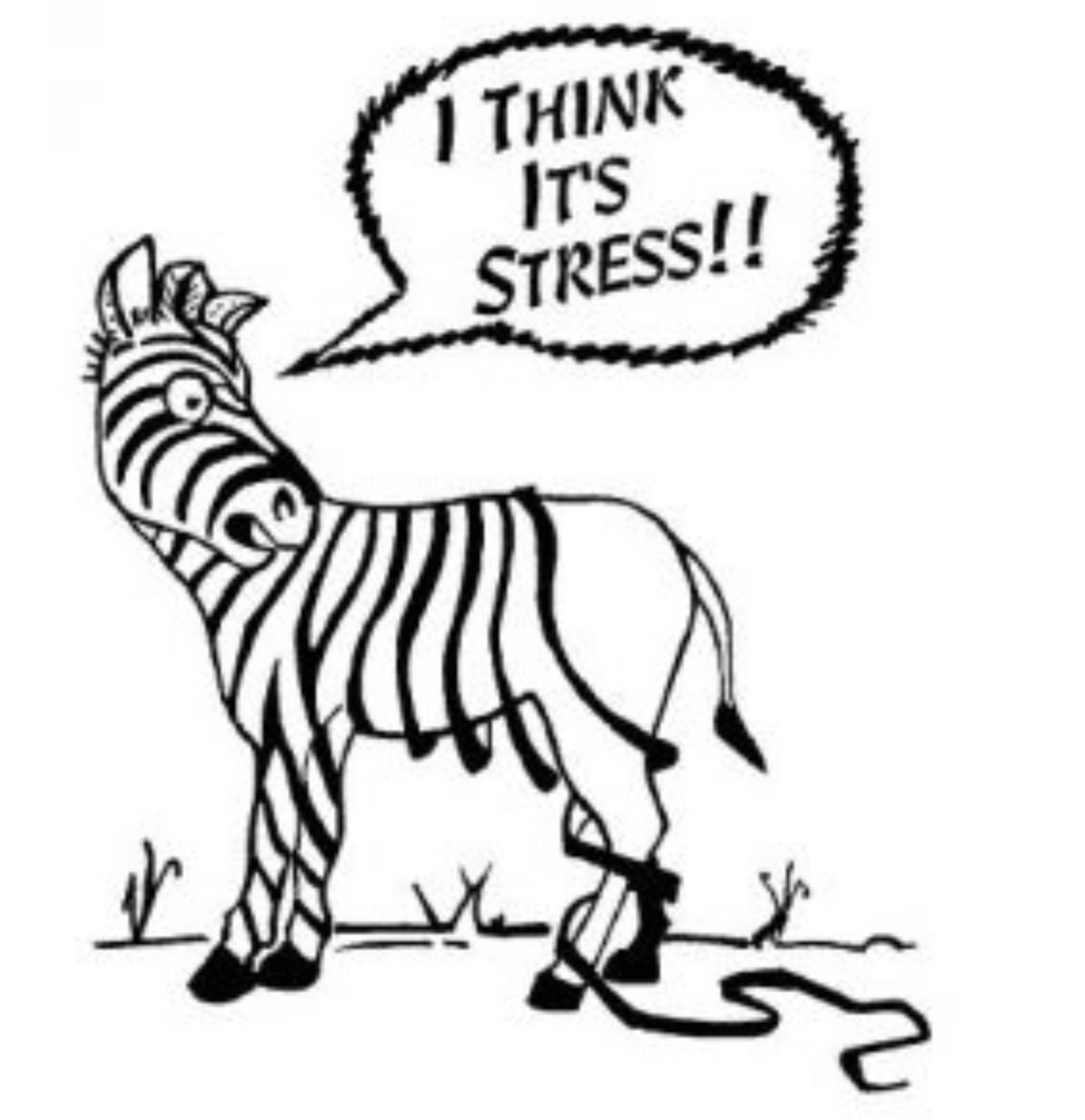 chronic-stress-effects-osteopath